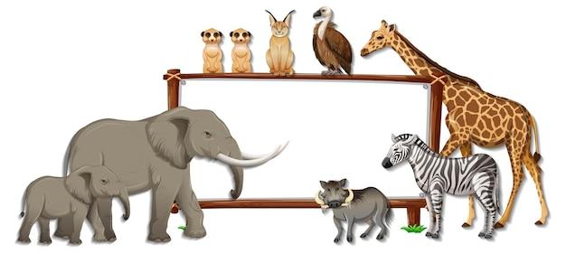 Banner en blanco con personaje de dibujos animados de animales salvajes sobre fondo blanco