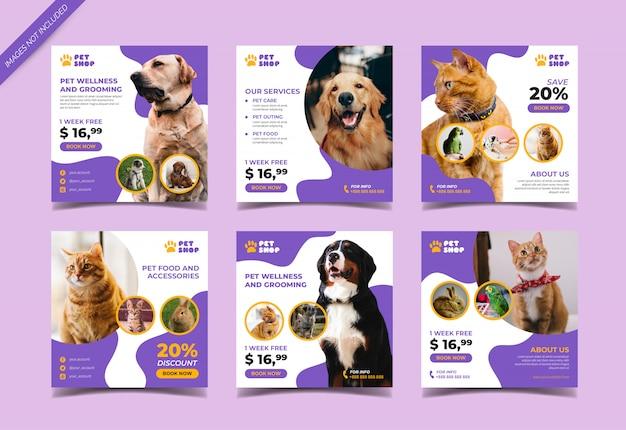Banner cuadrado de tienda de mascotas para publicación en redes sociales