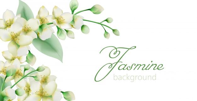 Banner de flores de jazmín verde acuarela con lugar para texto