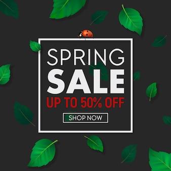 Banner de fondo de venta de primavera con marco, hermosas hojas verdes y mariquita.