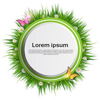 Banner de hierba verde de paisaje de primavera