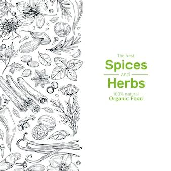 Banner de hierbas y especias dibujadas a mano