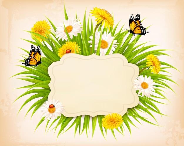Banner de primavera con césped, flores y mariposas. vector.