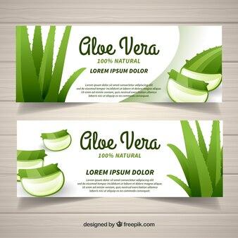 Banner productos aloe vera en diseño plano