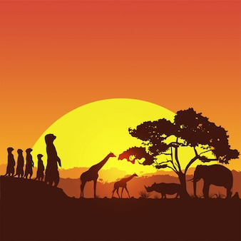 Banner de safari, silueta de animales salvajes en sudáfrica