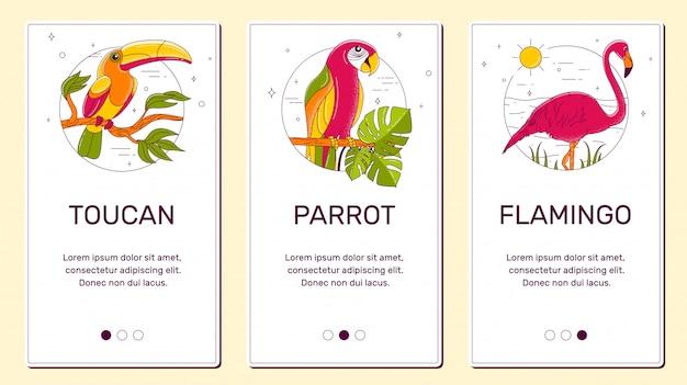 Banner para teléfono, tucán, flamingo, loro.