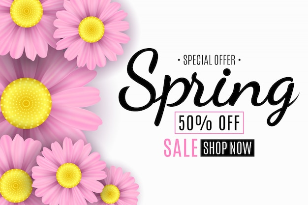 Banner de venta de primavera con flores rosas de manzanilla.