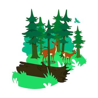 Banner web 2d de parque nacional, cartel. hábitat natural de los ciervos. paisaje plano de conservación de animales salvajes sobre fondo de dibujos animados. parche imprimible de conservación de la vida silvestre, elemento web colorido