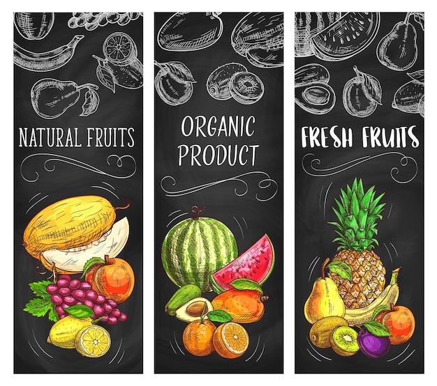 Banners de bosquejo de frutas frescas, piña natural, limón, albaricoque o uvas con melón.