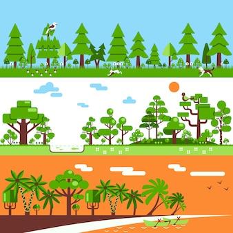 Banners de bosques tropicales caducifolios coníferas