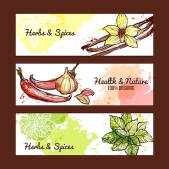 Banners de hierbas y especias