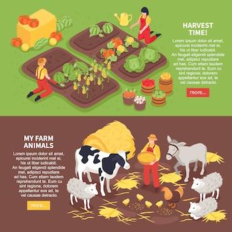 Banners horizontales isométricos con animales de granja y agricultores cosechando cosecha 3d aislado