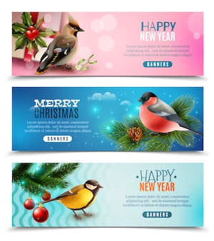 Banners horizontales de pájaros de invierno