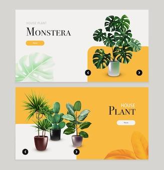 Banners horizontales de plantas de interior con monstera, cactus y otras plantas exóticas en macetas