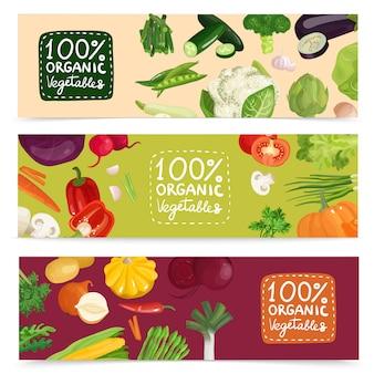 Banners horizontales de verduras orgánicas