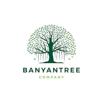 Banyan tree logo icono ilustración