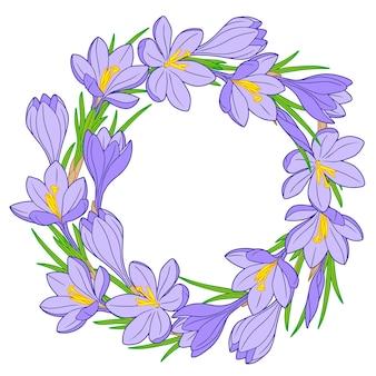Bastidor con flores de azafrán azul aislado en blanco