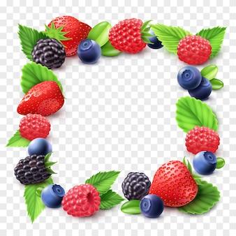 Berry frame ilustración transparente