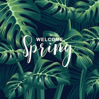 Bienvenido fondo de primavera