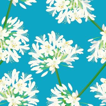 Blancanieves agapanthus sobre fondo azul