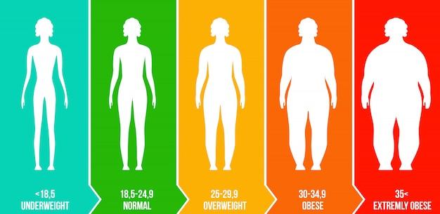 Bmi, escala de gráfico de infografía de índice de masa corporal.
