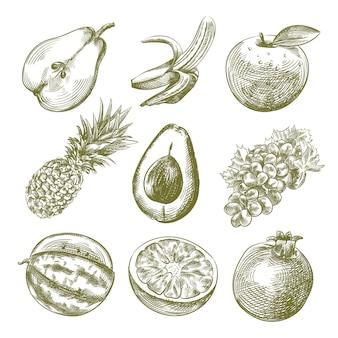 Boceto dibujado a mano del conjunto de frutas. el conjunto incluye pera medio en rodajas, plátano abierto, manzana, piña, aguacate medio en rodajas, uvas, naranja, granada, sandía