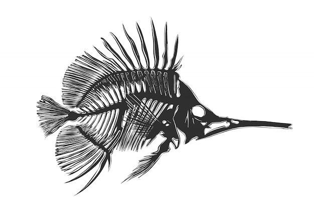 Boceto dibujado a mano de huesos de pescado en monocromo