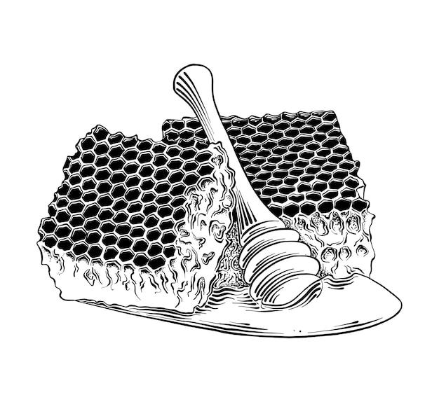 Boceto dibujado a mano de nido de abeja con cucharón de madera