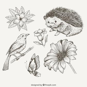 Bocetos de bonitos animales y flores