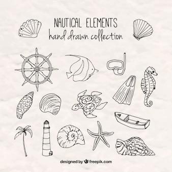 Bocetos de elementos marinos