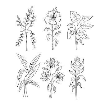 Bocetos de hojas tropicales blancas y negras