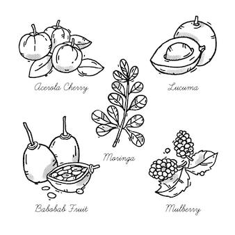 Bocetos orgánicos super alimentos para la salud y la dieta.
