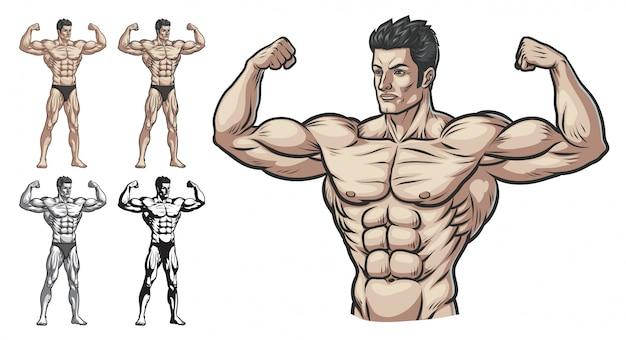 Bodybuilder masculino cuerpo completo