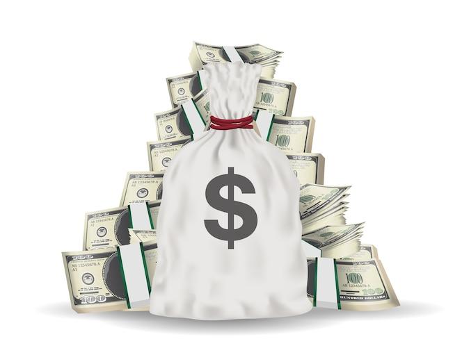 Bolsa de dinero con grupo de billetes de dólar paquete
