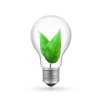 Bombilla eco realista aislado sobre fondo blanco. ilustración de la lámpara de economía de energía