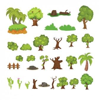 Bonita colección de cactús y árboles