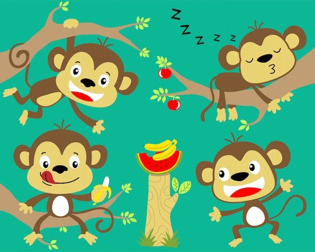 Bonito conjunto de dibujos animados mono