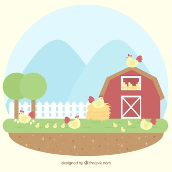 Bonito fondo de granero con gallinas