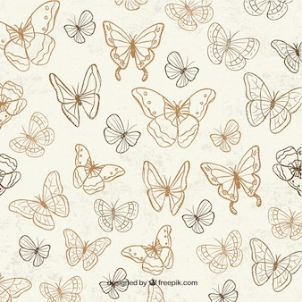 Bonito fondo con mariposas dibujadas a mano