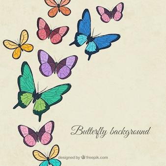 Bonito fondo con mariposas