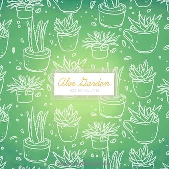 Bonito fondo verde de bocetos de aloe vera