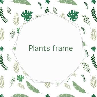 Bonito marco con copyspace en el centro y hermosas plantas verdes.
