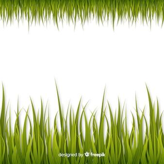 Borde de hierba verde diseño realista