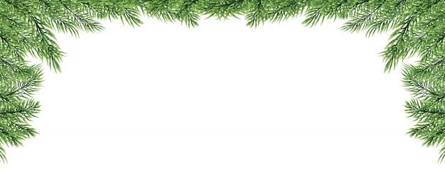Borde de navidad con rama de abeto aislado sobre fondo blanco.