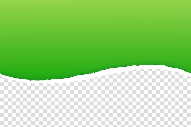 Borde de papel verde rasgado en transparente