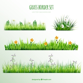 Bordes de hierba decorativos con flores bonitas