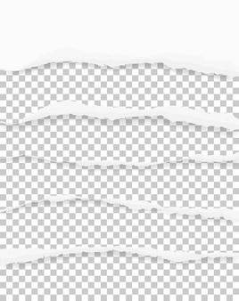 Bordes de papel rasgados para el fondo con área para espacio de copia