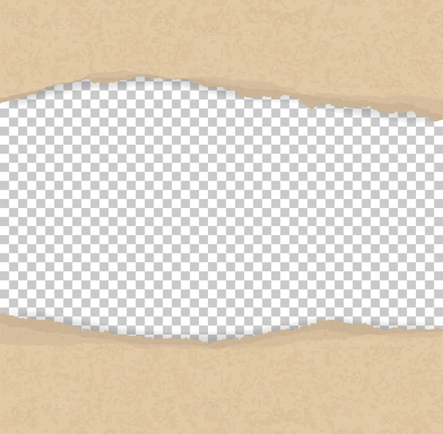 Bordes de papel rasgados para el fondo
