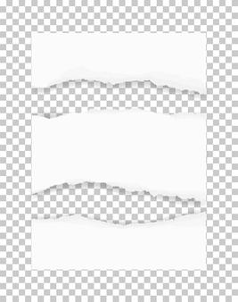 Bordes de papel rasgados para el fondo.