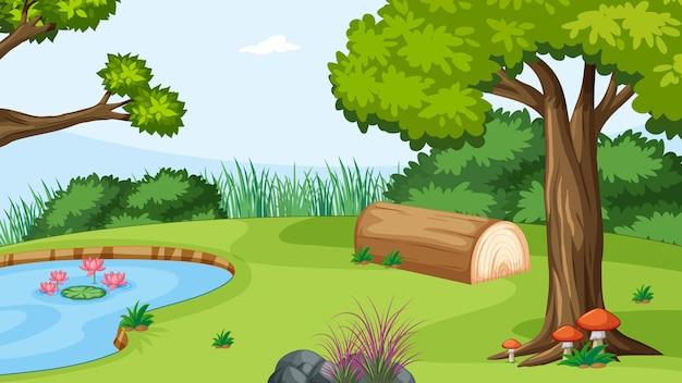 Bosque al aire libre de la naturaleza